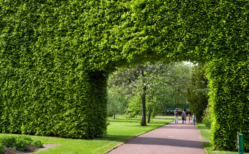 Botanic Gardens, Edinburgh, Scotland
